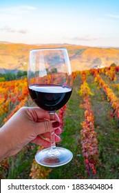 ドウロ渓谷で生産されたポルトガルの赤ドライワインのグラスと秋の背景にカラフルな古い段々になったブドウ園、ポルトガルのワイン産地