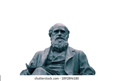 Statue of Charles Darwin isolated on a white background.  With colour toning