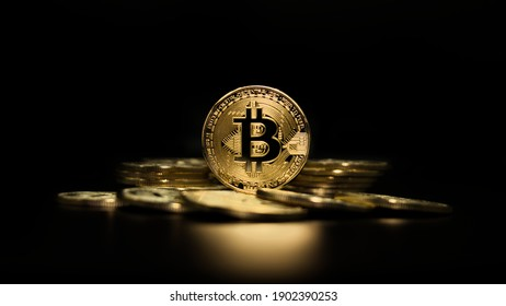 Cryptocurrency bitcoin the future coin