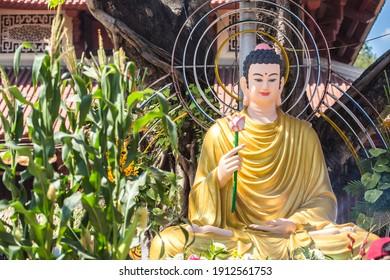 Estatua de Buda Gautama sosteniendo una flor de loto