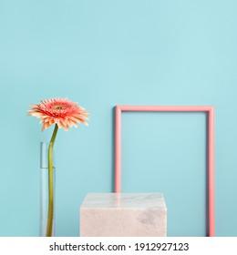 Diseño de borde de marco de primavera con gerbera en florero sobre fondo azul y rosa. Copie el espacio para texto o cita inspiradora y motivadora. Concepto floral contemporáneo mínimo. Maqueta para publicidad.