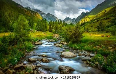 Paisaje del arroyo del río del valle de la montaña. Vista del valle verde de la montaña. Flujo de agua del arroyo de montaña. Vista del agua del valle verde de la montaña