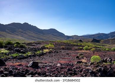 Wunderschöne Landschaft der Felder der Kanarischen Inseln mit dem Sonnenuntergang und der tiefen Sonne, die in der Zeit nach dem Regen mit Bentayga wunderschöne Reflexionen und Schatten erzeugt