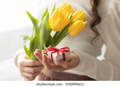 Female hands hold tulips and gift box on write background