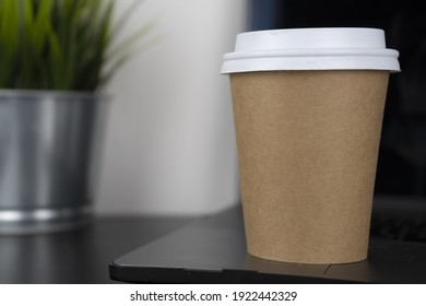 A take-away paper cup rests atop a computer and an acanthus office plant. This photo is suitable for use as a mockup to put your logo or design