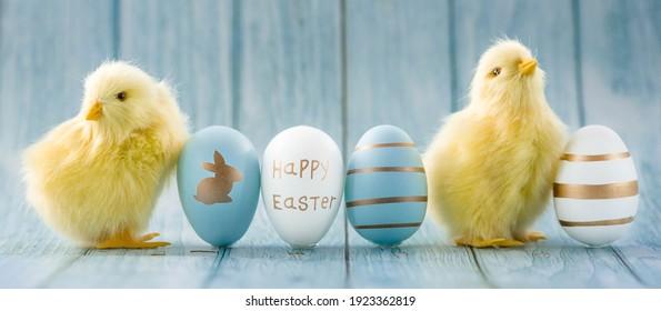 Banner. Blaue, gelbe, weiße Ostereier und gelbe Küken auf einem blauen hölzernen Hintergrund. Das minimale Konzept von Ostern. Eine Osterkarte mit einer Kopie des Platzes für den Text.