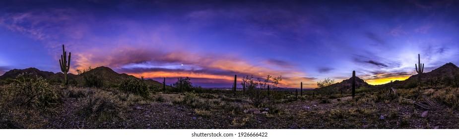 Kaktuswüste im Morgengrauen-Panorama. Kakteenschattenbilder im Morgengrauen Panoramalandschaft. Sonnenaufgangskaktuswüste am Morgenpanorama. Kaktuswüsten-Morgendämmerungspanorama