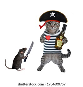 A gray cat in a pirate uniform drinks rum. White background. Isolated.