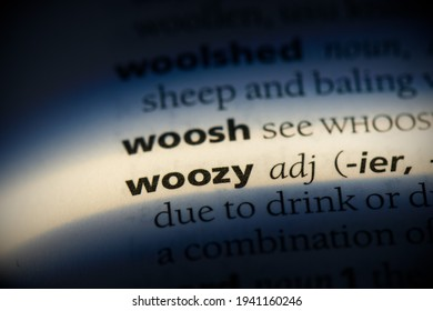 woozy word in a dictionary. woozy concept, definition.