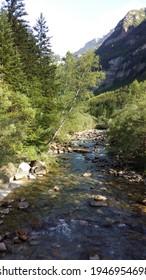 Im Ordesa-Nationalpark in den spanischen Pyrenäen zirkuliert ein Bach zwischen kleinen Wasserfällen neben Buchen und anderen Flussbäumen