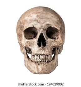 Human skull on isolated white background