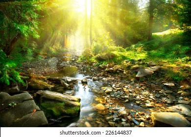 山區河流,森林景觀。在綠色森林中間的寧靜瀑布風光