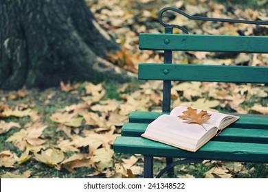 秋の公園でベンチに横になっている葉を開いた本