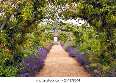 アーチ道の下に小道があるカラフルな英国の夏の花の庭
