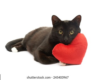 Black cat lying and using the toy red plush heart as a pillow, composition isolated over the white background