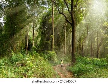 巨大な木々に囲まれた森の中に立っている女の子