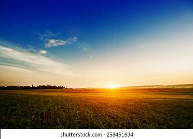 Campo verde y hermosa puesta de sol