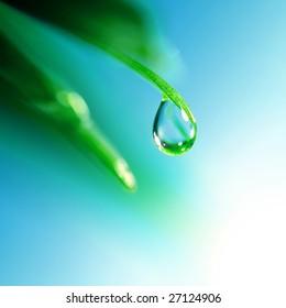 gota de agua brilla en la luz del sol