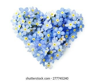 Vergissmeinnicht Blumen in der Form eines Herzens auf Weiß isoliert