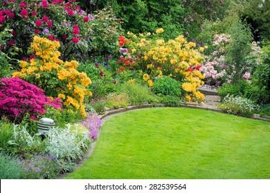 Beautiful garden in spring