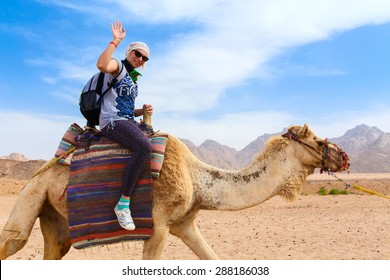 Young caucasian woman tourist riding on camel in Egypt desert