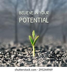 Glaube an dein Potenzial