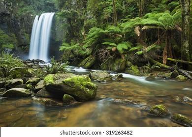 Wasserfall in einem üppigen Regenwald. Fotografiert an den Hopetoun Falls im Great Otway National Park in Victoria, Australien.