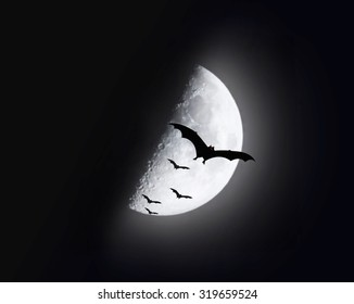 illustration of bats flying with blur half moon background   (Elements of this image furnished by NASA) Halloween concept.