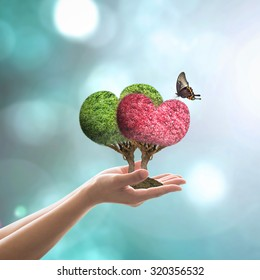 Heart tree couple green-red trees in love with butterfly on woman's hand