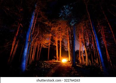 夜のキャンプファイヤーで暗い森