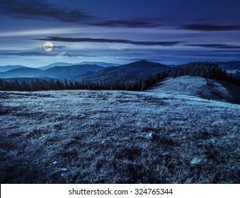 Wiese mit hohem Gras auf einem Berggipfel nahe Nadelwald bei Nacht im Vollmondlicht