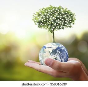 Globo, tierra en mano humana, mano sosteniendo nuestro planeta tierra brillando. Imagen de la Tierra proporcionada por la NASA