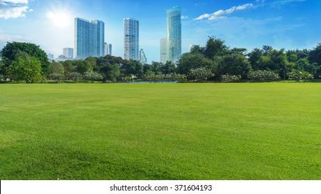 grünes Feld mit Bäumen und Gebäudestadt im blauen Himmel