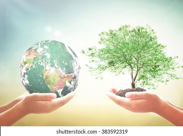 Tu bishvat concept: Two human hands holding earth globe and big tree. Elements of this image furnished by NASA