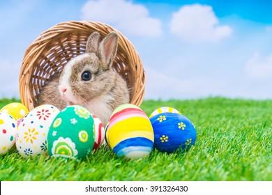 青い空と緑の草にウサギとイースターエッグ