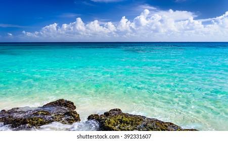 楽園の自然、砂、海水、岩、ヤシの木の葉、そして熱帯のビーチの夏。プラヤデルカルメン、リビエラマヤ、メキシコ。