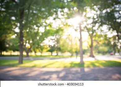 晴れた日、背景、夏の時間に花の咲く木と庭の焦点がぼけたボケ背景