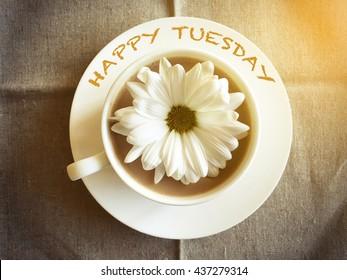 Kaffeetasse auf Tisch mit weißem Gänseblümchen - Happy Tuesday Wort Vintage-Stil