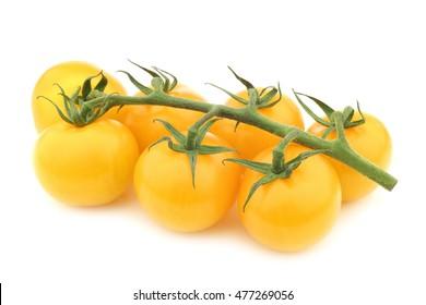 """verse gele """"smakelijke tom"""" tomaten aan de wijnstok op een witte achtergrond"""