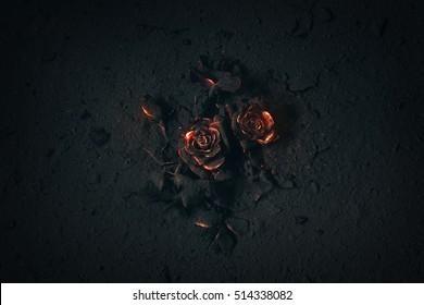 Eine in Asche begrabene Rose mit glühender Glut.