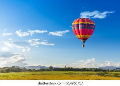 緑の水田の上の熱気球。自然と青空の背景の構成