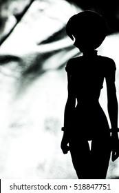 Anime doll shadow