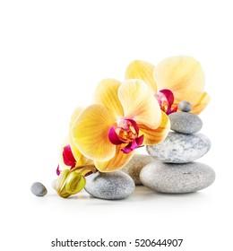 Flores de orquídeas amarillas y piedras de spa aisladas sobre fondo blanco trazado de recorte incluido
