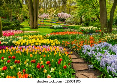 Coloridos parterres de tulipanes y camino de piedra en un jardín formal de primavera