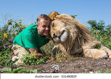 The man and lion are sitting together in the sunflowers