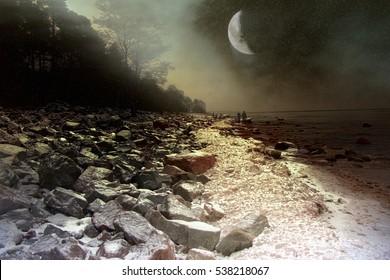 Loop onder de oude maan. Romantische fantasie in somber bos, ontelbare sterren