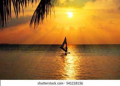 Sunset Wind Surfer, Maldives