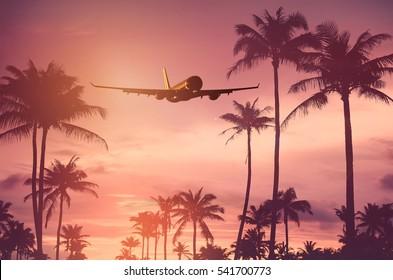 熱帯のヤシの木と夕焼け空の抽象的な背景の上を飛んでいる飛行機。ビジネスの夏休みと旅行の冒険のコンセプトのコピースペース。ヴィンテージトーンフィルターエフェクトカラー。