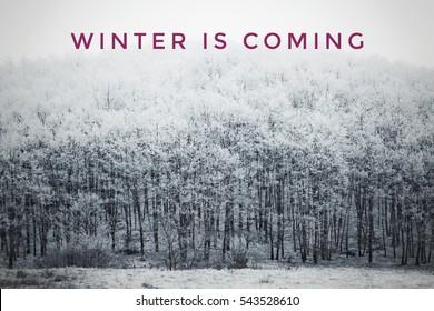 Der Winter kommt Text mit Winterszene im Hintergrund