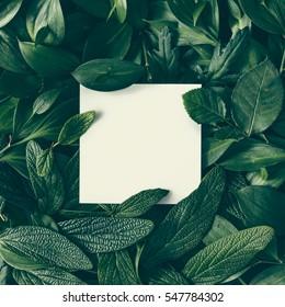 Kreatives Layout aus Blumen und Blättern mit Papierkartennotiz. Flach liegen. Naturkonzept